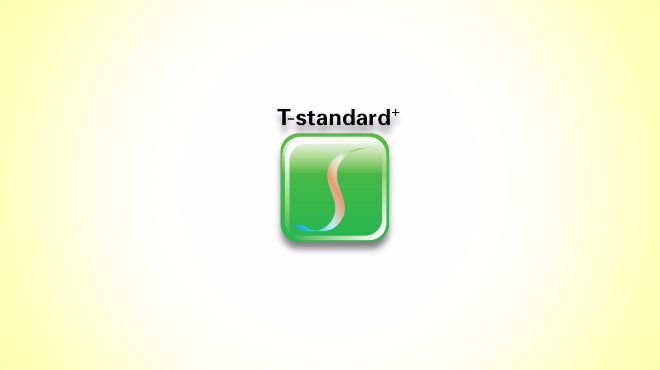Video: An Introduction to T-standard by Prof. HAU Kit-tai